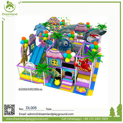 Innovative Indoor Miracle Playground Equipment Parts DL005